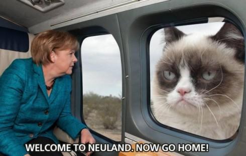 merkel-ghimpele-neuland-600x381