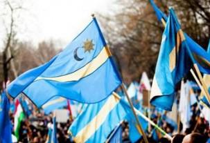 steaguri-secuiesti-carpe-albastre-303x207