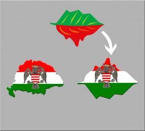 Roșia-Ungaria-1