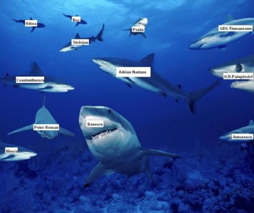 rechini