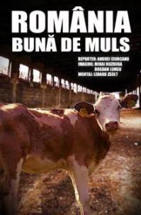 romania-buna-de-muls-0666bde