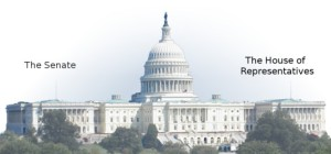 "From the Newseum - The United States Congress has an upper chamber called the Senate and a lower chamber called the House of Representatives (or ""House"" for short) which share which share the responsibilities of the legislative process to create federal statutory law. FOTO"