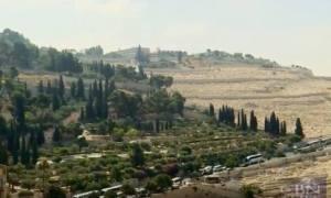 Muntele Maslinilor Mount of Olives Israel foto captura