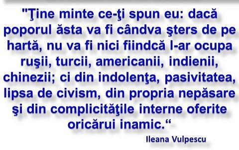 Citat din ILEANA VULPESCU.