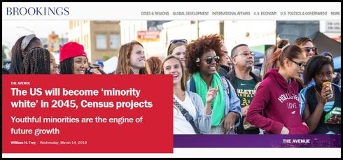 US-Minority-white-in-2045.jpg